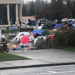 Library encampment